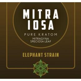 Mitra Iosa - 50 Pure Kratom Capsules (25g) - Elephant Strain